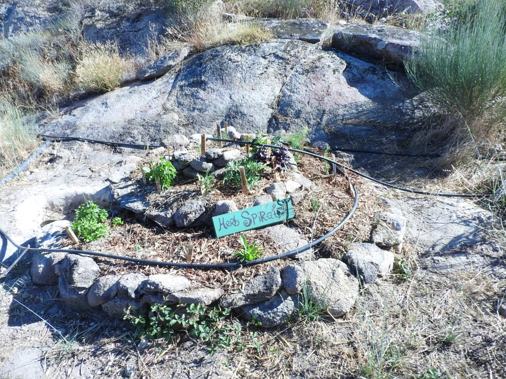 Our herb spiral at Keela Yoga Farm