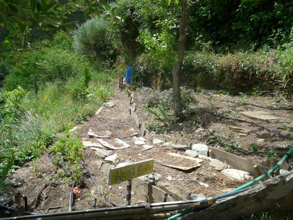 Awakened Life Project Permaculture