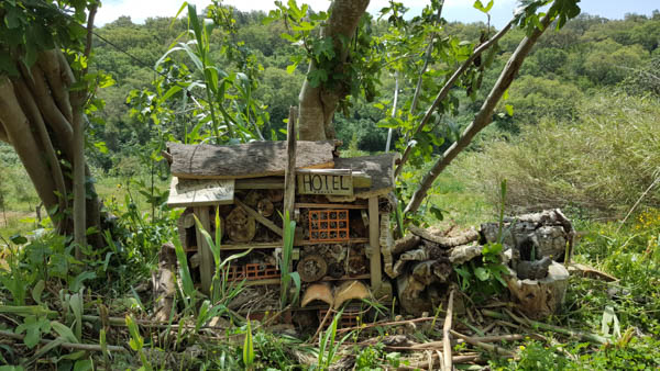 Insect Hotel Portugal
