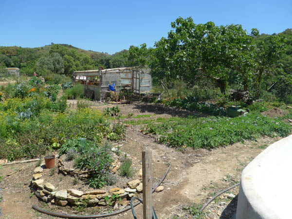 kitchen garden portugal