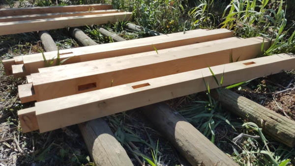 Tenon and Mortise joints