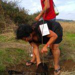 Reforestation volunteer project portugal