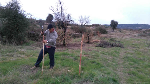 starting-a-food-forest-portugal