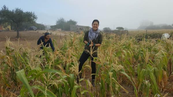 volunteering-on-a-farm-in-portugal