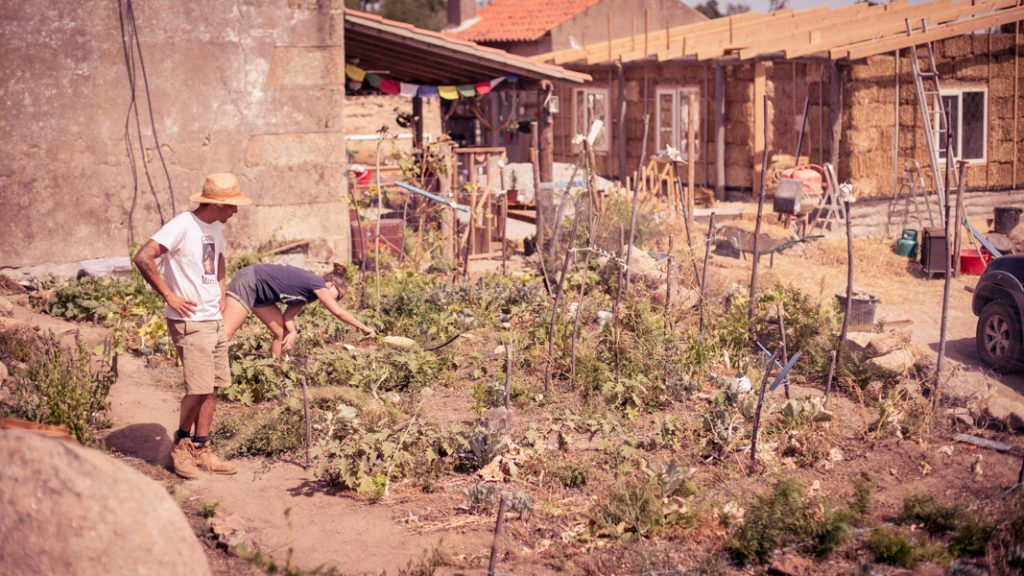 Photo of Laurence in the garden with the new strawbale house at the top right