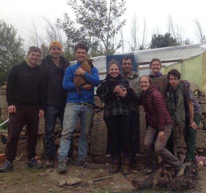 Permaculture volunteering