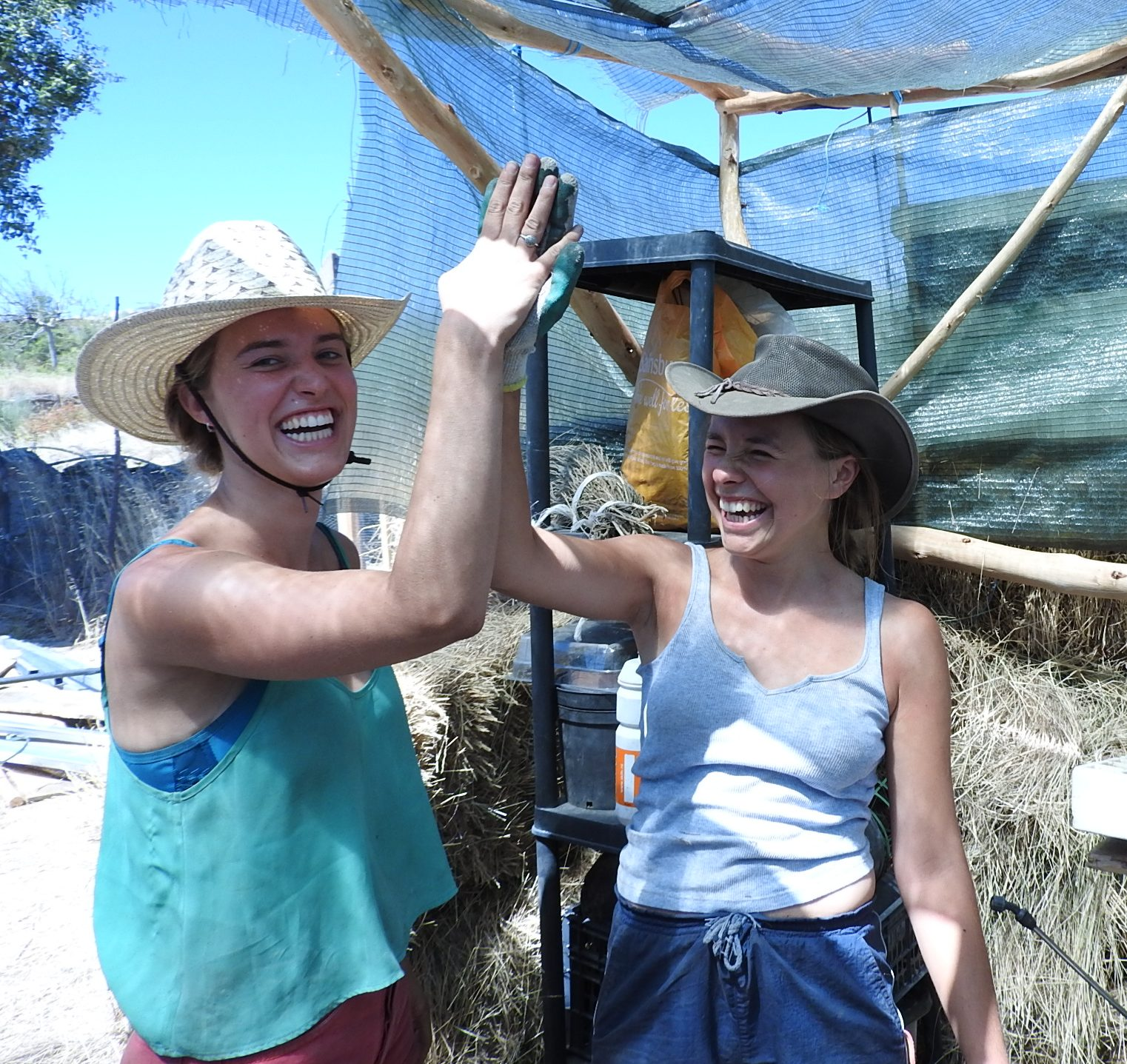 These two lovely ladies built our greenhouse