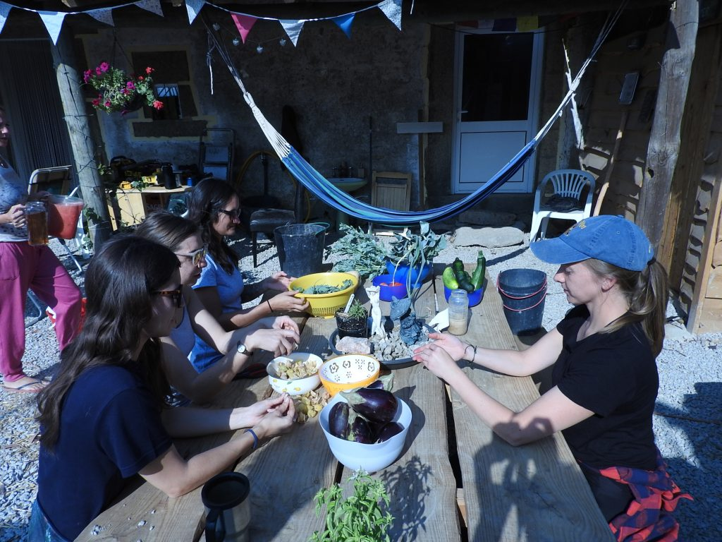 Volunteers collected vegetables and seeds and helped separated them for cooking