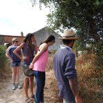 Offgird eco farm stay Portugal