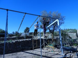 Finishing the greenhouse structure