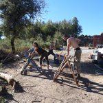 Photos of Volunteering at Keela Yoga Farm