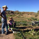 Photos of Volunteering at Keela Yoga Farm