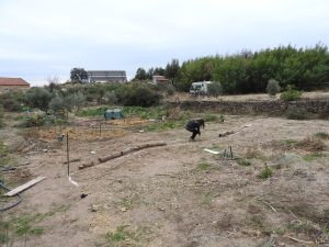 The group designed a swale, marked it out, dug it out with a mechanical digger and then planted around it