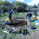 Photos from March Food Forest Course