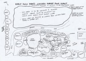 Chicken food forest design