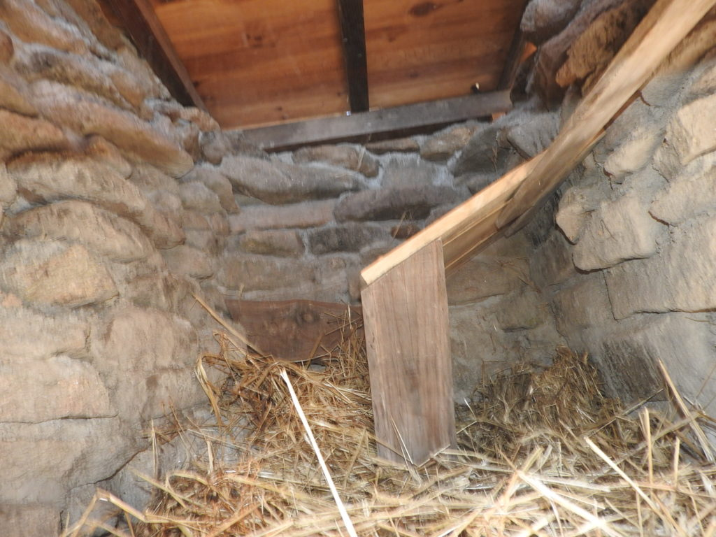 Long Drop Compost Toilet (15)