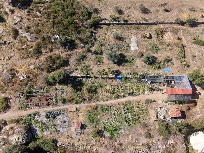Food Forest in Portugal