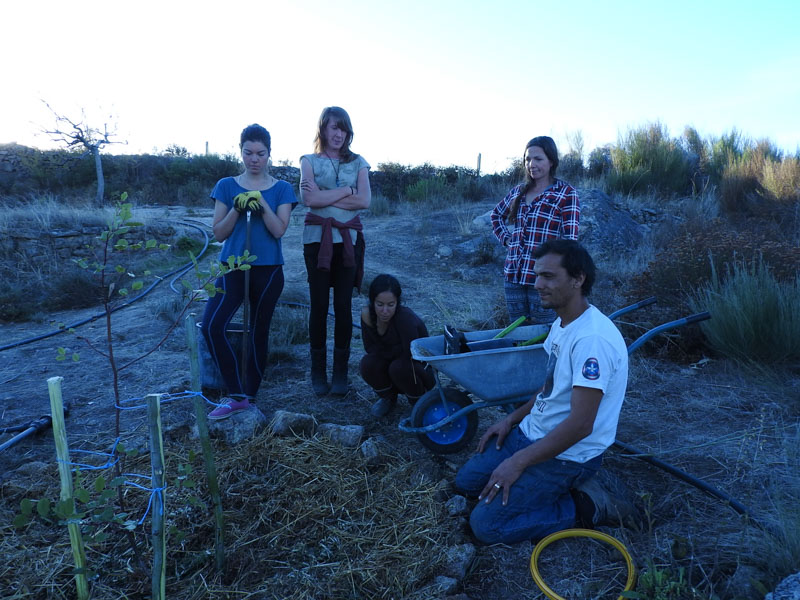 Laurence Manchee - Food Forest Course Portugal