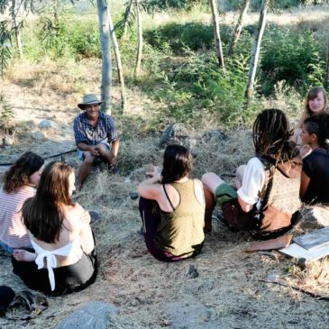 Permaculture internships