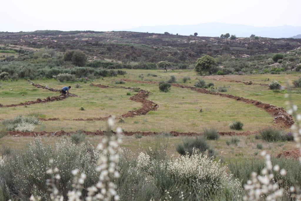 Permaculture Internship - Earthworks