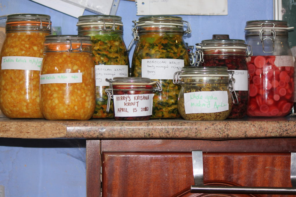 permaculture internship fermenting