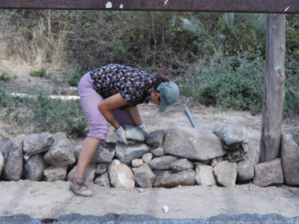 Dry stone wall practice