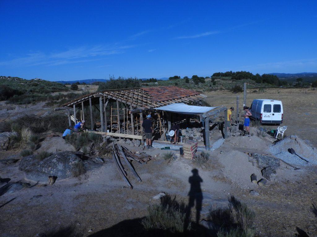 Barn coming along