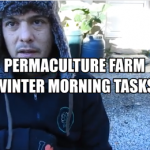 Morning Tasks on a permaculture farm